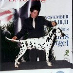 Coppola European winner 2002