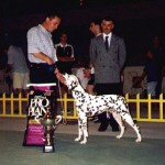 Moon winning BEST OF BREED & BEST IN SHOW SPECIALTY @ SPECIALTY SHOW IN SPLIT 1999