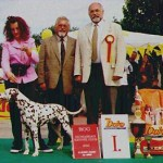 Moon winning BEST OF GROUP & 3rd BEST IN SHOW @ CACIB SZOMBATHELY 2000