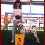Corrado winning 3rd pl. champion class @ WORLD SHOW BUDAPEST 1996