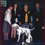 "Corrado winning Junior BEST IN SHOW & ""BELGIAN PRINS"" @ BELGIAN CLUB SHOW 1995"