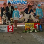 r. BEST OF GROUP @ Nat. show KARLOVAC '13