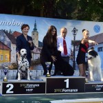 r.BEST IN SHOW native breeds @ Nat. show Samobor '13