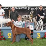 Nory winning BEST OF GROUP 3rd pl.@ CAC SAMOBOR 2009