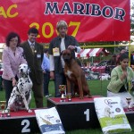 Nory winning r. BEST OF GROUP @ CACIB MARIBOR 2007