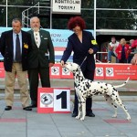 Nory winning for BEST IN SHOW native breeds @ CACIB OSIJEK 2007