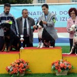 Nory winning JUNIOR BEST IN SHOW 3rd.pl @ CAC VUKOVAR 2007