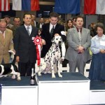 Rocco winning group @ CACIB LJUBLJANA 2007